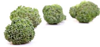 зеленый цвет брокколи Стоковые Изображения