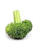 зеленый цвет брокколи Стоковые Фотографии RF