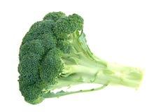 зеленый цвет брокколи Стоковая Фотография