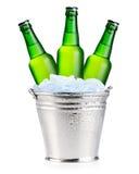 зеленый цвет бутылок пива Стоковое Изображение RF