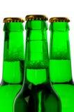 зеленый цвет бутылок 3 пива Стоковая Фотография