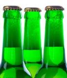 зеленый цвет бутылок 3 пива Стоковая Фотография RF