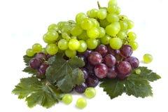 зеленый цвет виноградины предпосылки черный Стоковое Фото