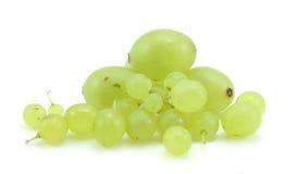 зеленый цвет виноградин ветви Стоковые Изображения RF