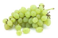 зеленый цвет виноградин ветви Стоковые Изображения