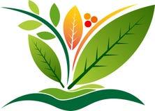 зеленый цвет выходит логос Стоковые Изображения RF