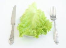 зеленый цвет выходит салат Стоковое Изображение