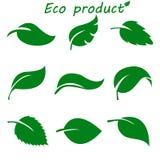 Зеленый цвет выходит собрание также вектор иллюстрации притяжки corel Стоковая Фотография RF