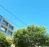 Зеленый цвет в городе Стоковое Фото