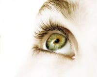 зеленый цвет глаза Стоковое Изображение