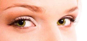 зеленый цвет глаз Стоковое Фото