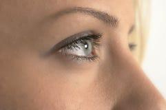 зеленый цвет голубого глаза Стоковое Изображение RF