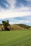 зеленый цвет голубого флага стоковое изображение