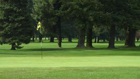 зеленый цвет гольфа курса Канады Стоковая Фотография