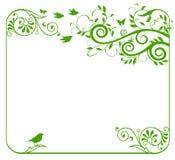 зеленый цвет граници флористический Стоковые Фото