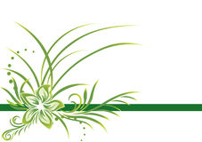 зеленый цвет граници Стоковые Изображения RF