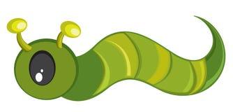 зеленый цвет гусеницы Стоковая Фотография