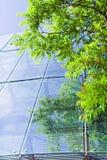 зеленый цвет дела здания Стоковая Фотография