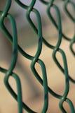 зеленый цвет загородки chainlink Стоковая Фотография RF