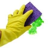зеленый цвет изолировал мыть Стоковое фото RF