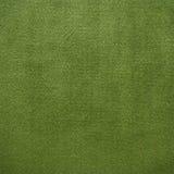 зеленый цвет ковра Стоковые Изображения RF