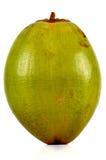 зеленый цвет кокоса Стоковые Фото