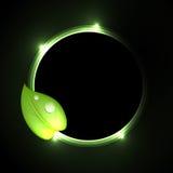 зеленый цвет конструкции искусства био Стоковое фото RF