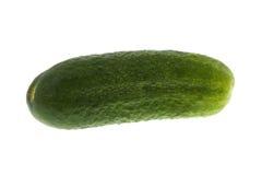 зеленый цвет корнишона Стоковое фото RF