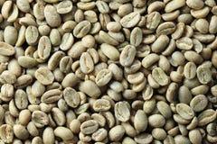 зеленый цвет кофе фасоли предпосылки Стоковые Изображения
