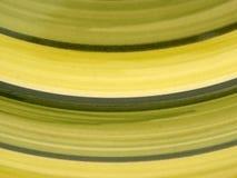 зеленый цвет кривых Стоковая Фотография RF