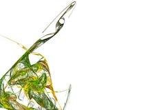 зеленый цвет кривых Стоковая Фотография