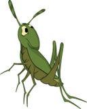 зеленый цвет кузнечика шаржа Стоковые Изображения
