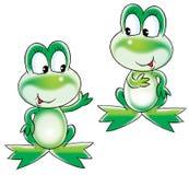 зеленый цвет лягушек Стоковые Фотографии RF
