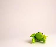 зеленый цвет лягушки Стоковая Фотография RF