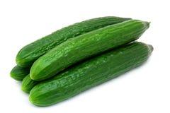 зеленый цвет огурца свежий Стоковые Изображения RF