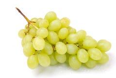 зеленый цвет одно виноградин группы Стоковые Фотографии RF