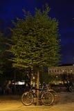 зеленый цвет окружающей среды Стоковые Изображения RF