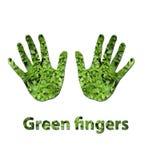 зеленый цвет перстов Стоковое Изображение