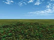 зеленый цвет полей Иллюстрация штока