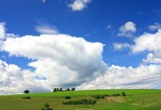 зеленый цвет полей Стоковые Изображения RF