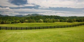 зеленый цвет поля загородки деревянный Стоковое Фото