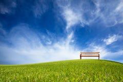 зеленый цвет поля стула Стоковое фото RF