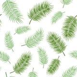 зеленый цвет предпосылки выходит белизна картина безшовная Стоковое Фото