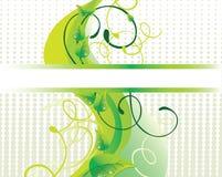 зеленый цвет предпосылки красивейший Стоковое Изображение