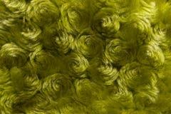 зеленый цвет предпосылки курчавый Стоковая Фотография