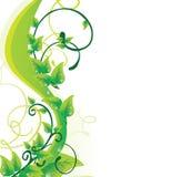 зеленый цвет предпосылки флористический Стоковая Фотография RF