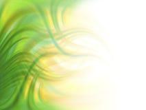зеленый цвет предпосылки Стоковая Фотография