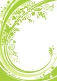 зеленый цвет предпосылки foral Стоковое Изображение