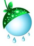 зеленый цвет развития Стоковые Фотографии RF