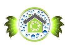 зеленый цвет развития Стоковая Фотография